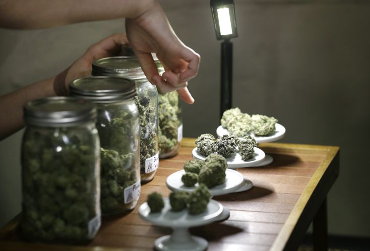 florida-marijuana